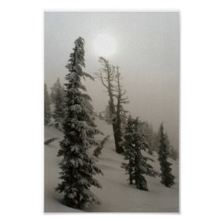 Snowy mountain and trees poster