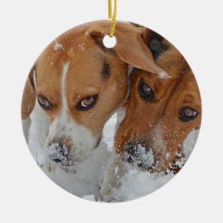 Snowy Noses Beagles Christmas Ornament