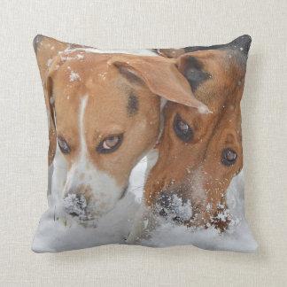 Snowy Noses Beagles Cushion