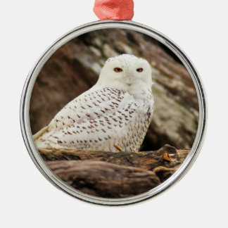 Snowy Owl at Christmas Christmas Ornament