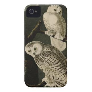 Snowy Owl Case-Mate iPhone 4 Case