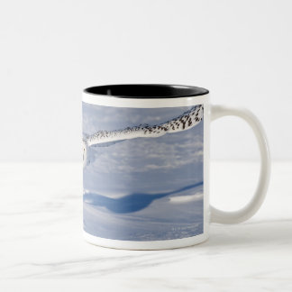 Snowy Owl in flight. 2 Two-Tone Coffee Mug