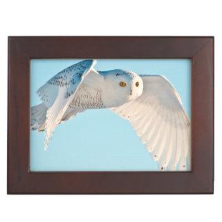 Snowy Owl in flight Keepsake Box