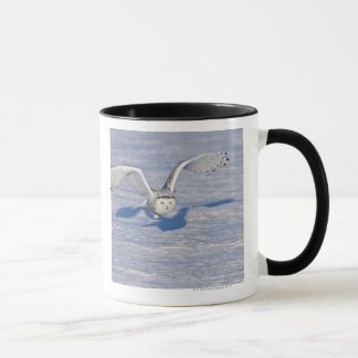 Snowy Owl in flight. Mug