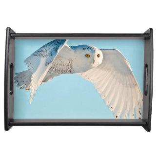 Snowy Owl in flight Serving Tray