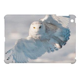 Snowy Owl landing on snow iPad Mini Cover