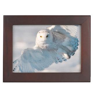 Snowy Owl landing on snow Keepsake Box