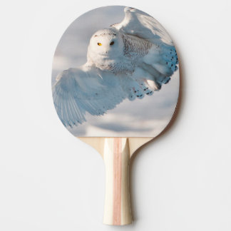 Snowy Owl landing on snow Ping Pong Paddle