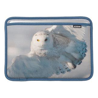 Snowy Owl landing on snow Sleeve For MacBook Air