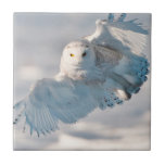 Snowy Owl landing on snow Small Square Tile