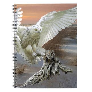 Snowy Owl Notebook