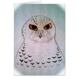 Snowy Owl Notecards Card