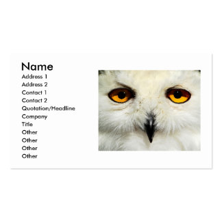 Snowy Owl, Pack Of Standard Business Cards