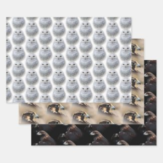 Snowy Owl / Peregrine Falcon / Golden Eagles Wrapping Paper Sheet
