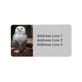 Snowy Owl  Photo Label