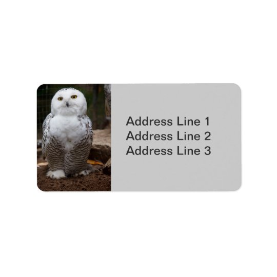 Snowy Owl  Photo Label Address Label