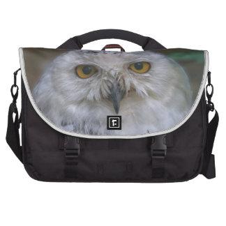Snowy Owl, Schnee-Eule Laptop Bags