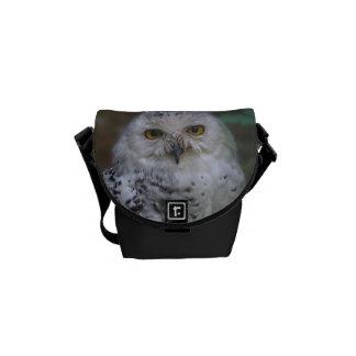 Snowy Owl, Schnee-Eule Messenger Bags