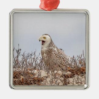 Snowy owl sitting on the beach christmas ornament