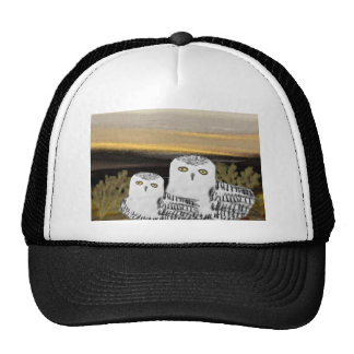 Snowy Owl Sunrise Cap