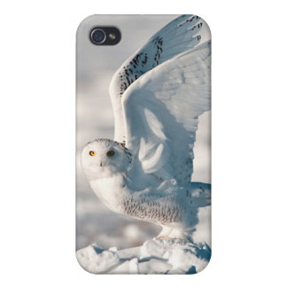 Snowy Owl taking off from snow Case For The iPhone 4