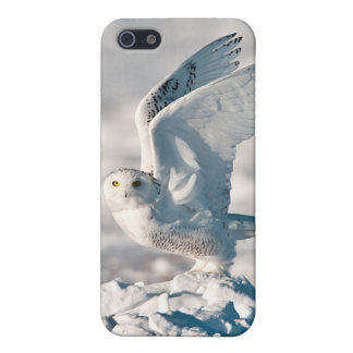 Snowy Owl taking off from snow Case For The iPhone 5