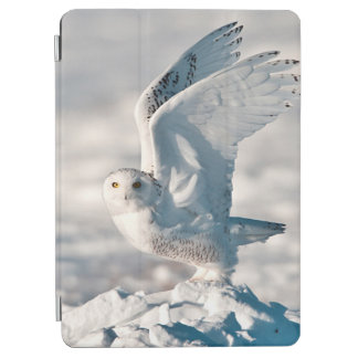 Snowy Owl taking off from snow iPad Air Cover