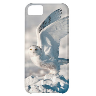 Snowy Owl taking off from snow iPhone 5C Case