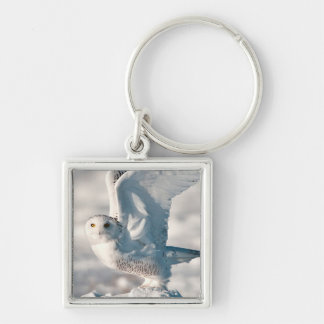 Snowy Owl taking off from snow Key Ring