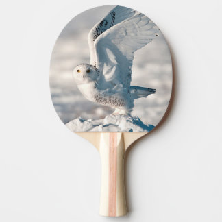 Snowy Owl taking off from snow Ping Pong Paddle