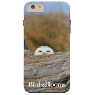 Snowy Owl Tough iPhone 6 Plus Case
