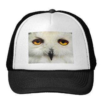 Snowy Owl Trucker Hats