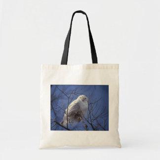 Snowy Owl - White Bird against a Sapphire Blue Sky