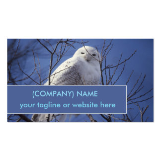 Snowy Owl, White Bird against a Sapphire Blue Sky Pack Of Standard Business Cards