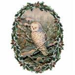 SNOWY OWL & WREATH by SHARON SHARPE Photo Sculpture Decoration