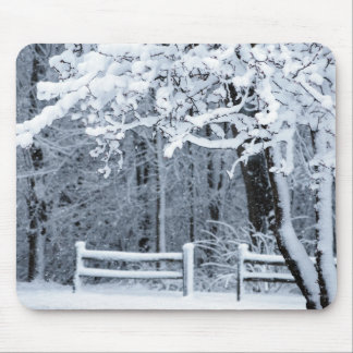 Snowy Paradise Mouse Mat