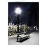 Snowy Park Greeting Card