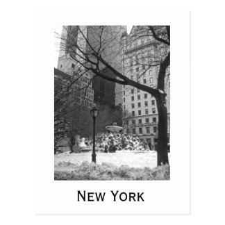 Snowy Park in New York Postcard