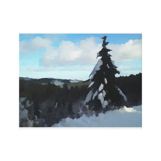 Snowy Pass Canvas Print