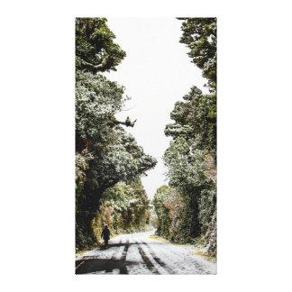 Snowy Pathway on Mount Taranaki Canvas Print