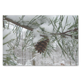 Snowy Pine Branch Winter Nature Photography Tissue Paper