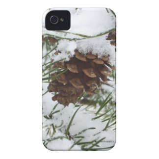 Snowy Pine Cone I Winter Nature Photography iPhone 4 Case