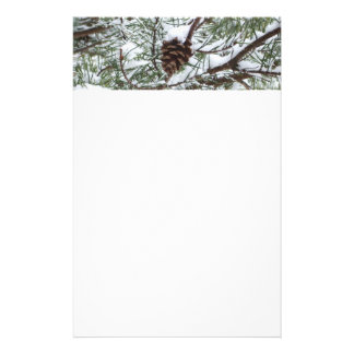Snowy Pine Cone II Winter Nature Photography Custom Stationery