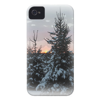 Snowy Pine iPhone 4/4S iPhone 4 Case-Mate Cases