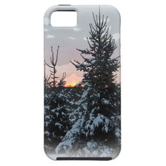 Snowy Pine iPhone 5 Case