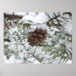 Snowy Pinecone Print