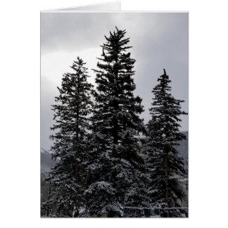 Snowy pines card