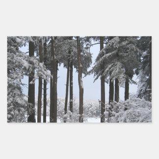 Snowy Pines in Blue Light --- Rectangular Sticker