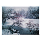 Snowy Pond in Central Park Poster