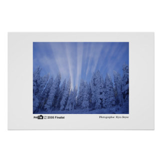 Snowy Rays - Photo of the Year 2005 Finalist Poster